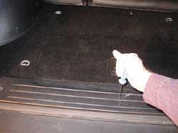 Remove the six screws that retain the rear door floor trim